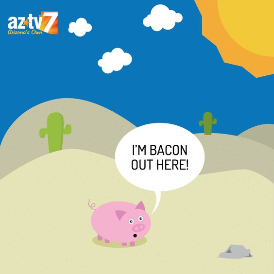 "Pig is ""Bacon"" in the sun"